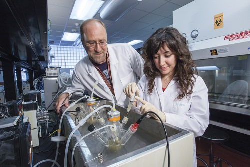 im Steele, pictured in his lab with research assistant Busra Aktas